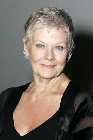 how to get judi dench hairstyle unique judi dench hairstyle from the back judi dench haircut