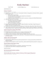 Copywriting Resume 100 Resume Hire Me 3d Artist Resume Resume For Your Job