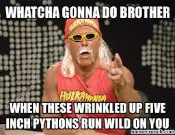 What You Gonna Do Meme - gonna do brother