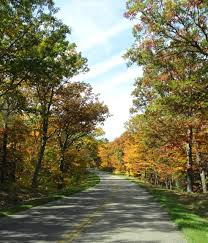fall foliage tours tyler east texas current fall