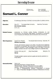 Resume Simple Sample by 100 Hybrid Resume Format Resume Functional Free Resume