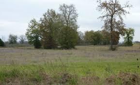chambre d agriculture agen 866 hectares de friches agricoles à remettre en culture dans l