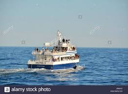 Whale Watches Cape Cod - a whale watching boat in massachusetts bay off provincetown on