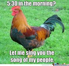Rooster Meme - scumbag roosters by awesomedude5608 meme center