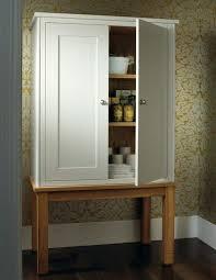 kitchen pantry cabinet freestanding pantry cabinet ikea happyhippy co