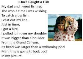 hyperbole poems lesson for kids study com