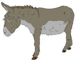 benjamin animal farm wikipedia