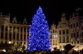 brussels celebrations to include 21 metre belgian tree