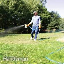 How To Cut Weeds In Backyard How To Eliminate Weeds From Your Grass Using Best Weed Killer