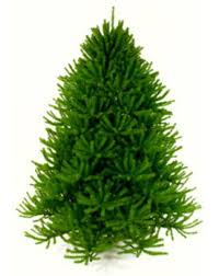christmas tree artificial artificial christmas trees made in usa