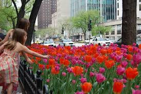 Define Magnificent The Magnificent Mile Chicago Il Top Tips Before You Go With