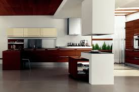 Designer Kitchen Cupboards Kitchen Cupboards Ideas For Modern Contemporary Kitchen In