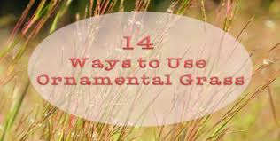 14 ways to use ornamental grass landscape edging