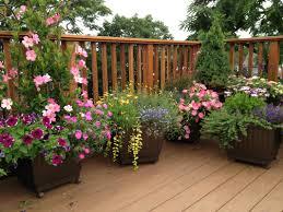 Pot Garden Ideas Garden Design Garden Design With Barrel Tub Garden Pot Garden