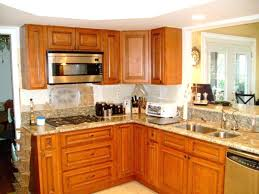 remodeling ideas for small kitchens remodel small kitchen ideas bloomingcactus me
