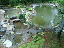 Backyard Fish Pond Kits by Koi Pond Building Project In Various Stages Backyard Koi Pond Cost