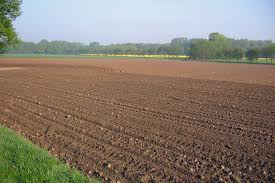 zahlungsansprüche landwirtschaft direktzahlungen landwirtschaftskammer nordrhein westfalen