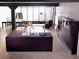 cuisine couleur aubergine cuisine grise et aubergine gris couleur homewreckr co