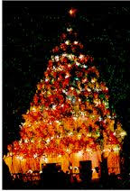 singing christmas tree singing christmas tree department