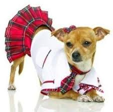 Puppy Halloween Costumes Puppy Costumes U2013 Festival Collections
