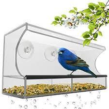 Nc Backyard Birds Backyard Bird Feeders Amazon Com