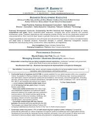 executive summary resume exles resume executive summary resume exle template