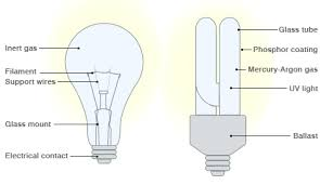 bbc news why eco light bulbs aren u0027t what they seem