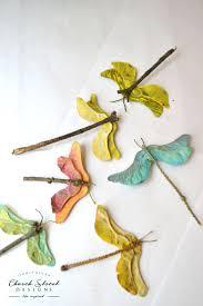 maple seed dragonflies u2013 church street designs
