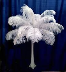 Ostrich Feather Centerpieces Wholesale by 24