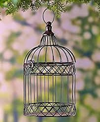 Bird Cage Decoration Amazon Com Fun Express Deluxe Home Decoration Bird Cage