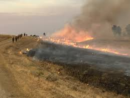 Wildfire Jordan Mt by Major Progress Made On Containing Lodgepole Complex Fire