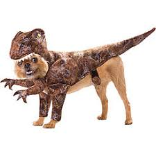 Kmart Size Halloween Costumes Size Pets Halloween Costumes Animals U0026 Insects Kmart