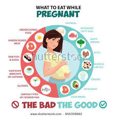 pregnant woman diet infographic food guide stock vector 655359853
