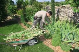 what do landscapers do how to become a landscaper environmentalscience org