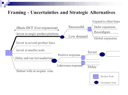 framing alternatives valuing investment flexibility ppt video online download