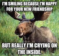 Moose Meme - sad canadian moose memes quickmeme