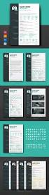 Skills And Experience Resume Examples by Best 25 Functional Resume Template Ideas On Pinterest