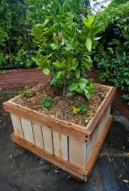 plant commercial planters extraordinary commercial outdoor