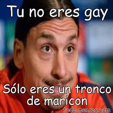 Maricon Meme - arraymeme de tu no eres gay sólo eres un tronco de maricon