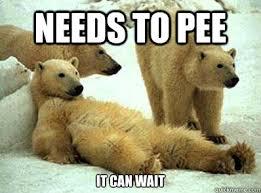 It Can Wait Meme - needs to pee it can wait lazy polar bear on rage comics quickmeme