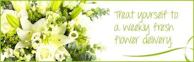 weekly flower delivery weekly flower delivery flowers by flourish ltd
