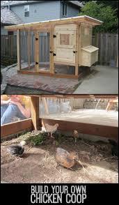 Small Backyard Chicken Coops by 173 Best Chicken Coops Images On Pinterest Chicken Coops