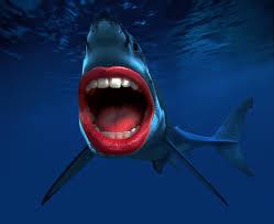 sharks with human teeth