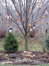 for the birds the hortiholic