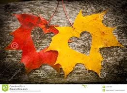 autumn leaves and love hearts royalty free stock images image
