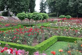 rose garden design home design ideas and pictures