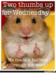 Wednesday Funny Meme - two thumbs up for wednesday we made it halfway through the week