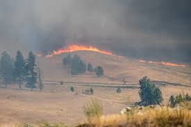 Canada Wildfires by Wildfires Raging East Of Osoyoos Osoyoos Times Osoyoos Times