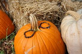 Best Pumpkin Patch Albany Ny by Boybeads Custom Natural Stone Bead Bracelets Necklaces For Men