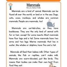 mammals life science reading comprehension worksheet reading